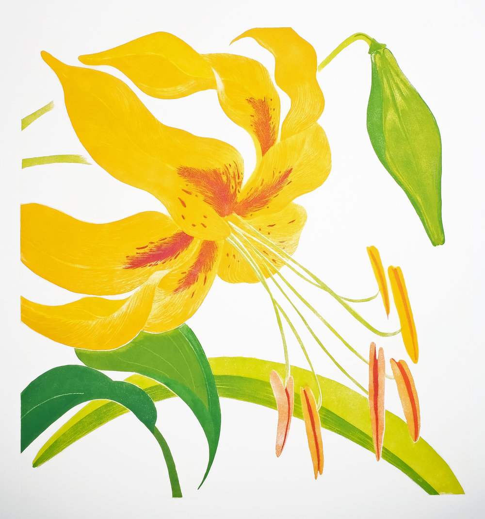 Grainne Cuffe, Butter Lily, Etching, paper 114 x 108 cm, €950 unframed / €1,200 framed