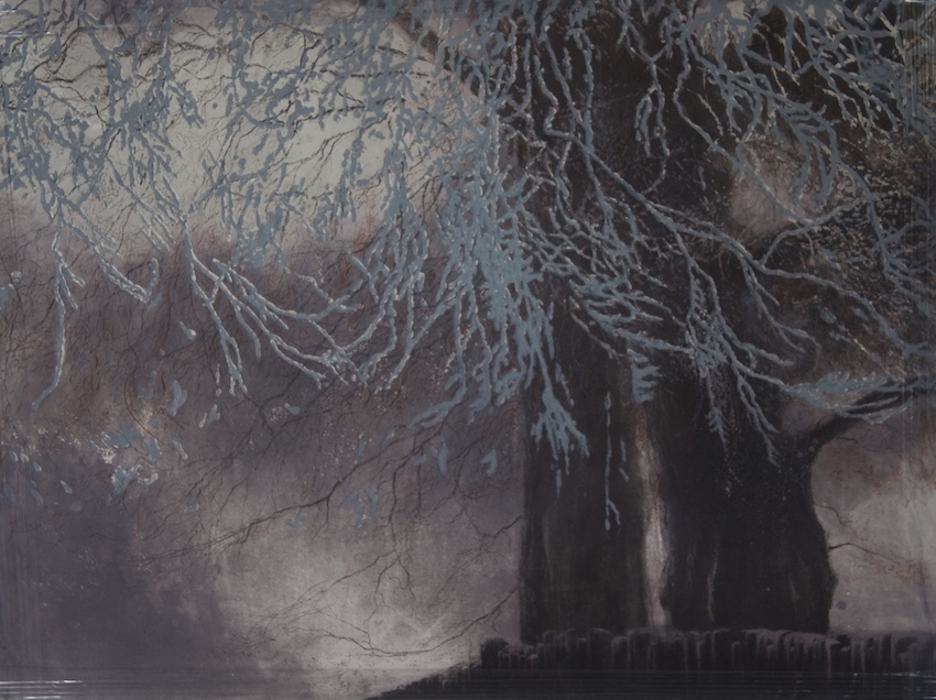 Beach Tree Winter, etching, aquatint and carborundum, edition of 30, paper and image 64 x 80cm, €550 unframed price