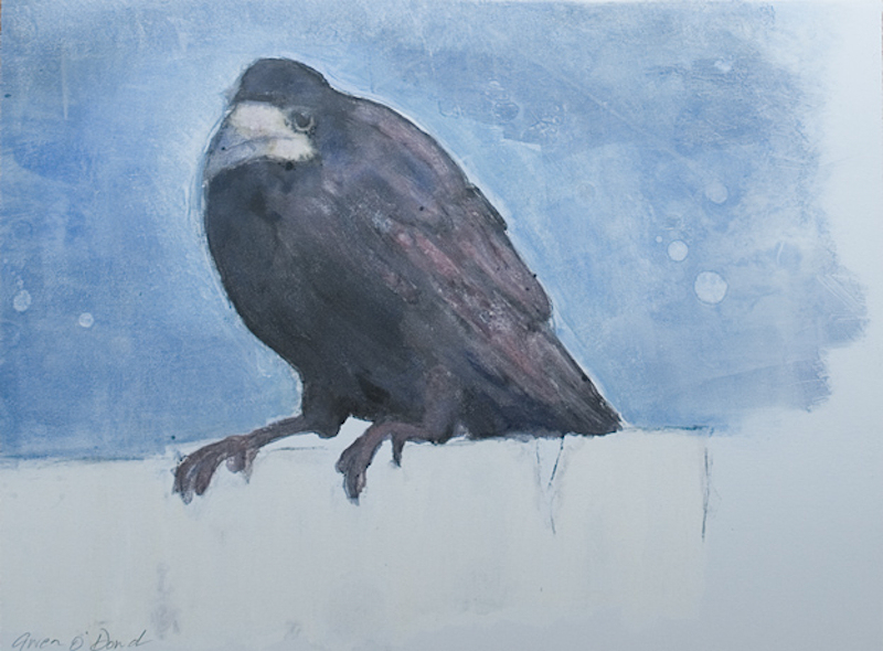 Crow Study III, monotype, paper & image 27cm x 35cm, ed of 1, 2010, €500 framed