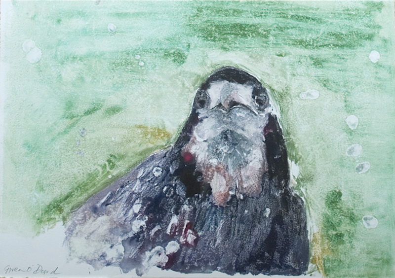 Crow Study I, monotype, paper & image 26cm x 36cm, ed of 1, 2010, €500 framed
