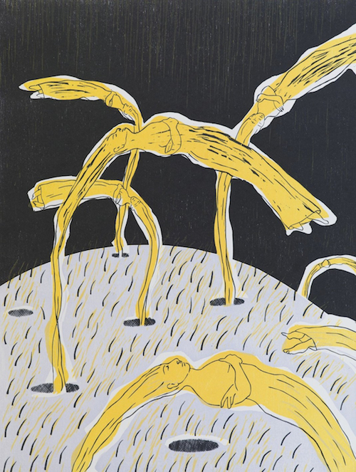Alice Maher, The Orchard of our Mothers, 65 x 50 cm (paper size), Woodcut, €775 unframed, €850 framed