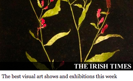 https://www.irishtimes.com/culture/art-and-design/visual-art/the-best-visual-art-shows-and-exhibitions-this-week-1.3397856