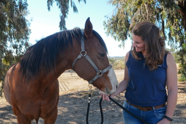 "HEARTS Therapeutic Riding Center manager Devon Sachey works with Sage, a Paint quarter horse — one of a dozen at the Santa Barbara facility. ""If you come in with a lot of anxiety, the horses aren't judging you,"" she says. ""They absorb the energy you present."" (Lara Cooper / Noozhawk photo)"