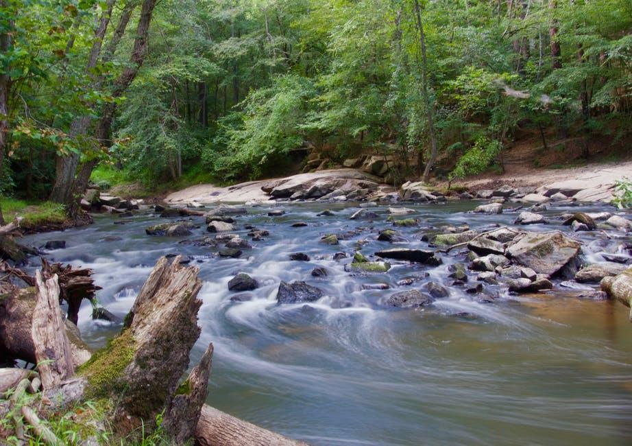 river 2.jpeg