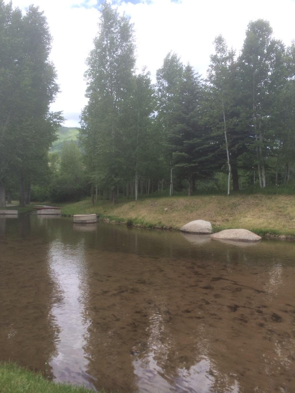 宿舍裡的河流