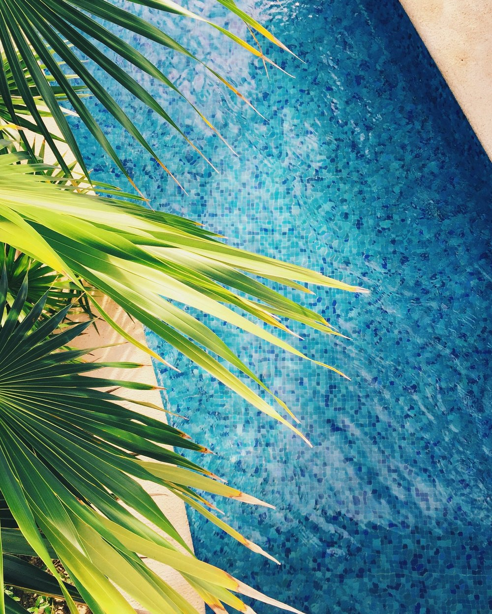 Pool Inspection Oahu.jpeg