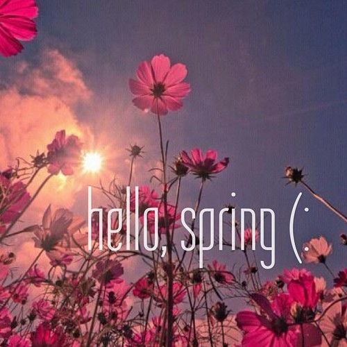 HELLO SPRING! — THE PEARL ALLEY