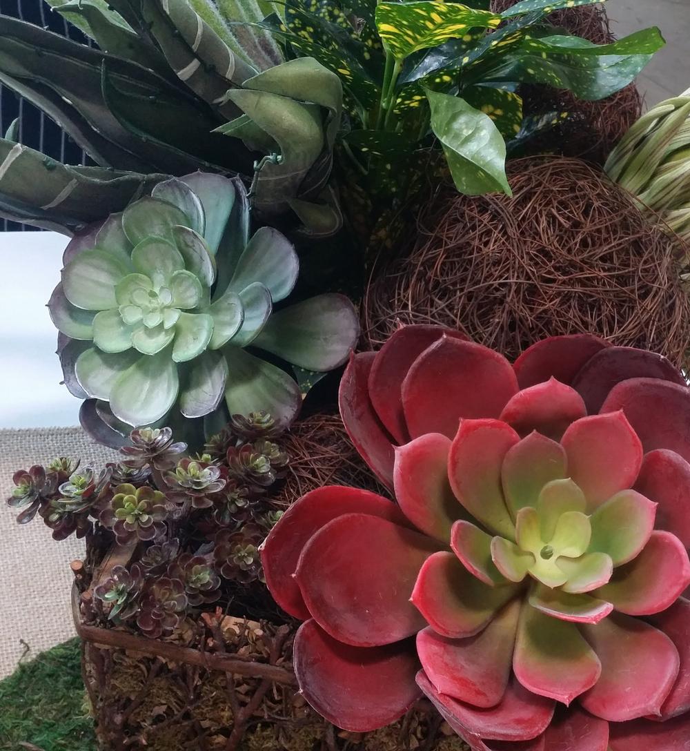 Decor Succulents Rocks 6.jpg