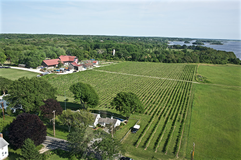 Their farm is the home of the fourth generation of a family of winegrowers.