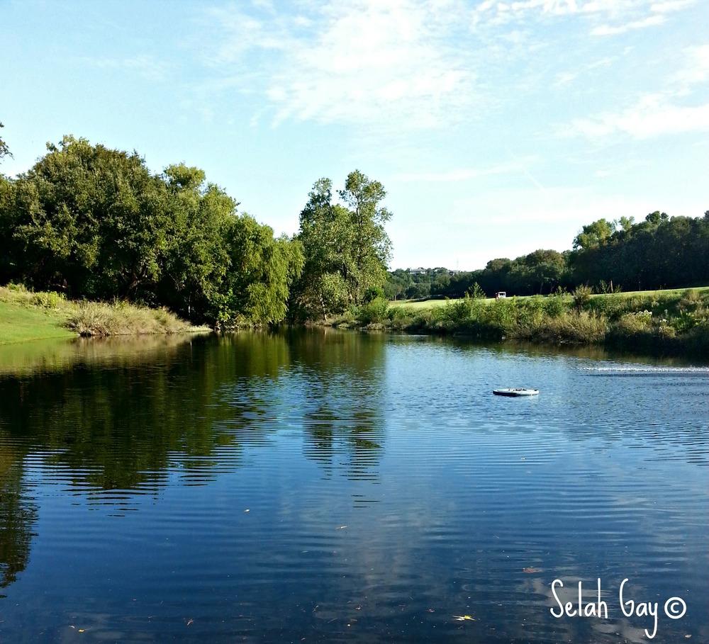 Bull Creek 3