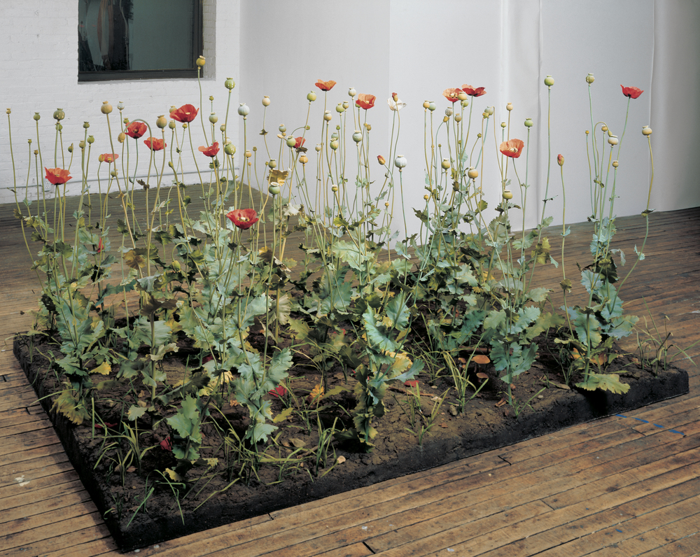 Crop, 1997-1998, PETG, thermoset, polymer, vinyl, lacquer, epoxy, oil paint, earth, and plexiglass, 58 x 96 x 72 inches