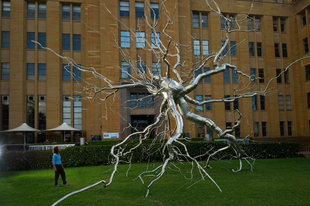 Neuron, 2010, Stainless steel, 41 x 48 x 52 feet   Neuron   represents the exploration of the dendritic structures of the human body, specifically, the brain and mental processes.  Both a sculptural and conceptual challenge,   Neuron   stands solitary on its branches and the growth patters move radially as opposed to a linear or binary manner.    Neuron   accompanies works by Mark Di Suvero, Louis Nevelson, Antony Gormley, and Jonathan Borofsky at the permanent site of the Frederk Meijer Gardens and Sculpture Park.