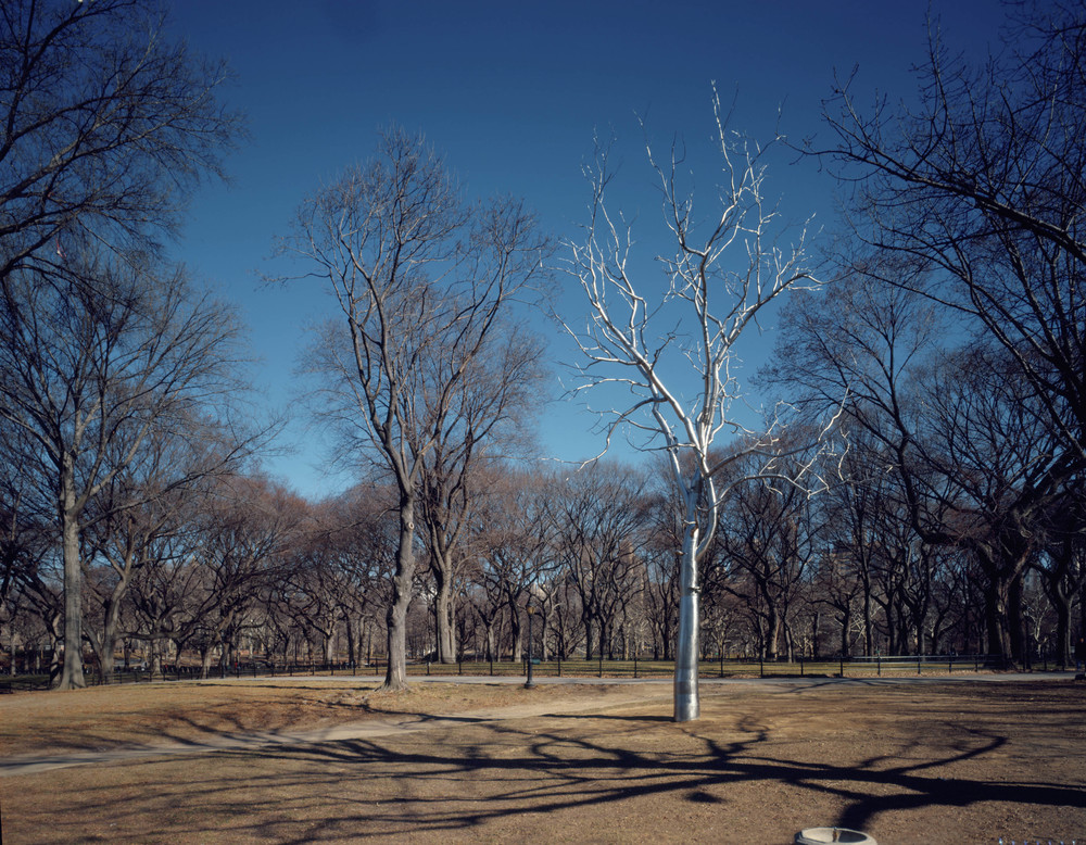 Bluff, 2002, Stainless steel and concrete, 52 x 32 feet