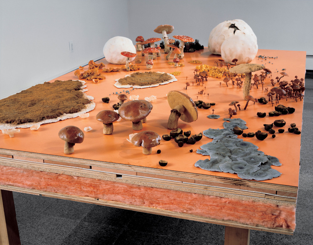Fungus Formica Field, 1998, Wood, fiberglass insulation, polymer, oil, lacquer, linoleum, and formica, 48 x 83 x 15 inches