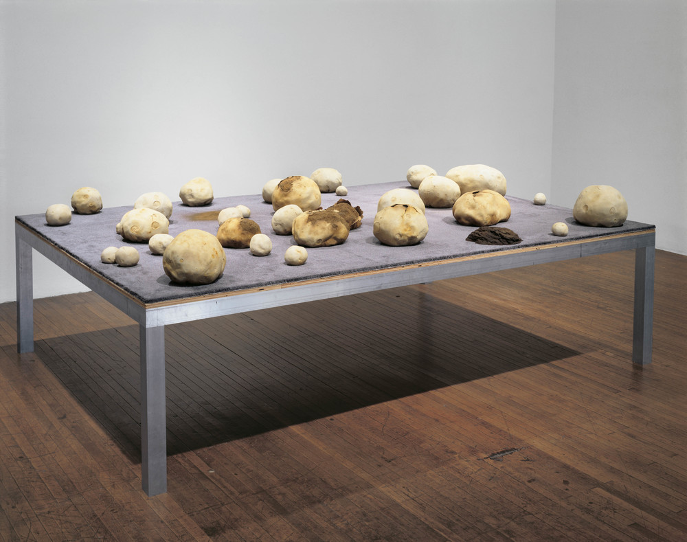 Puffball Field, 1998, Aluminum, carpet, pigment, polymer, oil and lacquer, and wood, 40 x 120 x 84 inches