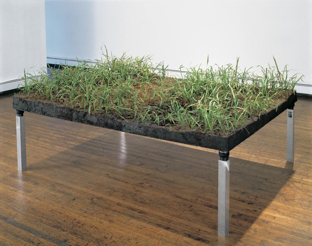 Vibrating Field, 1998, Aluminum, rubber, soil, soil, lacquer, epoxy, PETG, vibrator, 50 x 96 x 73 inches