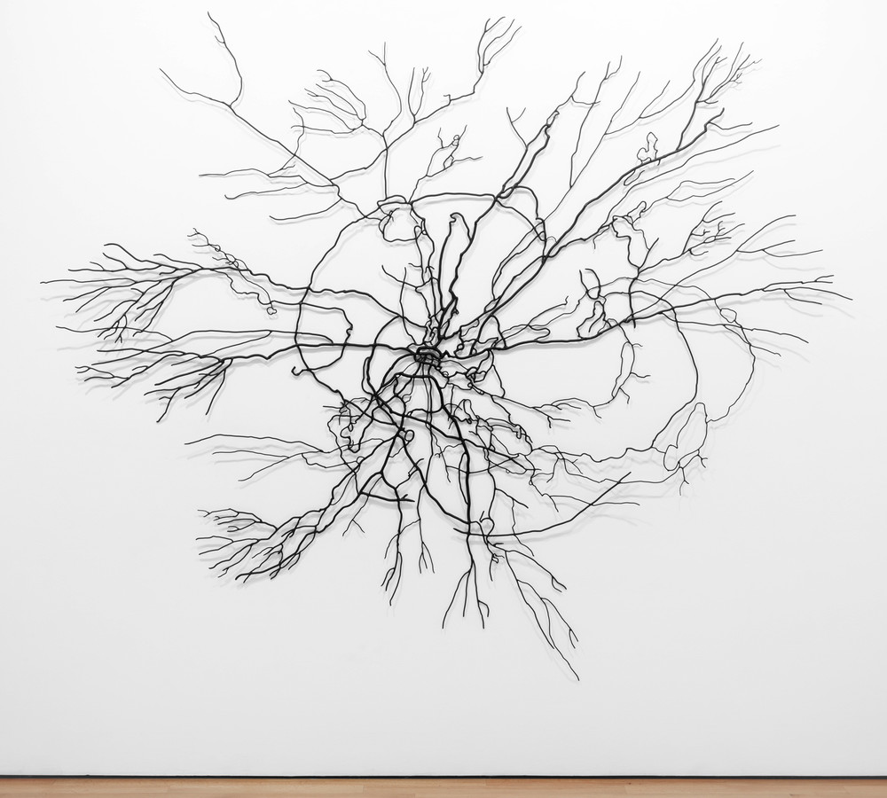 Mycelium 3, 2010, Stainless steel and enamel, 105 x 99 3/8 x 3 inches