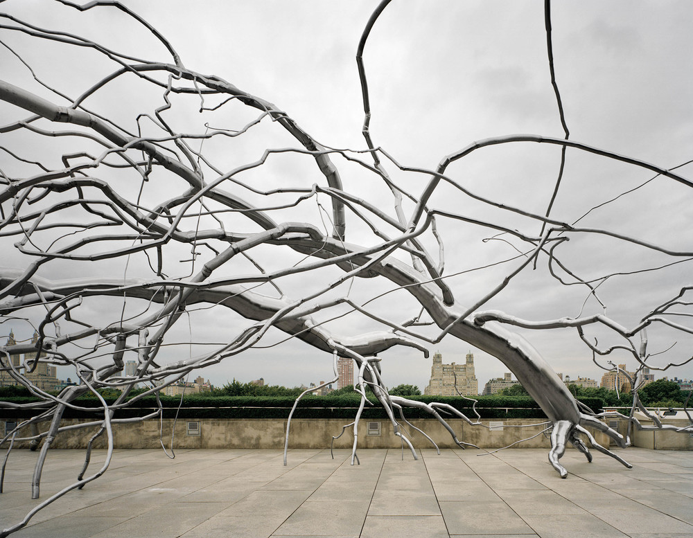 Maelstrom, 2009, Stainless steel, 22 x 140 x 50 feet,  Commissioned for the Metropolitan Museum of Art, Iris B. and Gerald Cantor Roof Garden, New York for the exhibition Roxy Paine on the Roof: Maelstrom April 28 through October 25, 2009     Maelstrom   is a sculpture whose forms evoke a forest that has been downed by some unseen powerful force, or perhaps that force itself.  It also can be seen as a mental storm characterized by a tangle of synaptic connections or a hyperactive mutated robotic vascular system.