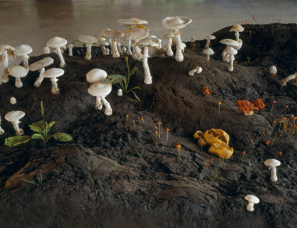 New Fungus Crop, 1999, Epoxy, thermoset polymer, aluminum, wood FETG, lacquer, oil paint, and earth, 35 x 84 x 108 inches