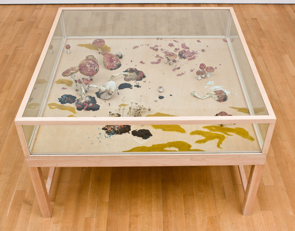 A vs. B, 2004, Thermoset polymer, epoxy, stainless steel, lacquer, oil paint, maple, and glass, 75 1/2 x 75 1/2 x 45 inches