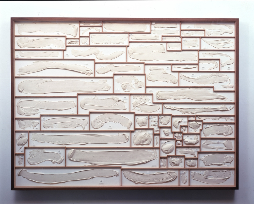 Pigeon Holes, 1997, polymer, mahogany, alkyd paint, insect pins, and plexiglas, 72 x 96 x 6 inches