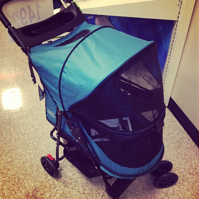 Dog strollers.. Cuz when God created canines those 4 paws probably weren't good enough..