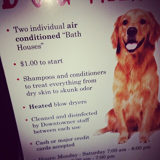 """This is for a dog wash but it boasts """"HEATED blow dryers"""" uhhhh aren't all blow dryers heated?"""