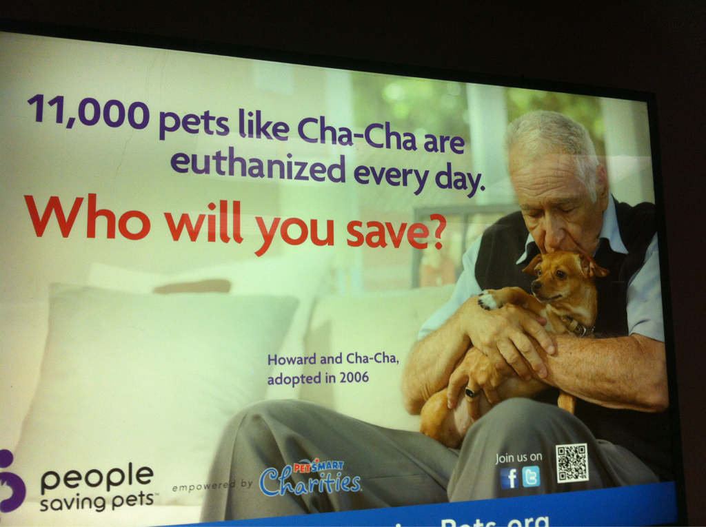 This senior citizen looks like he's about to eat cha-cha the wiener dog…