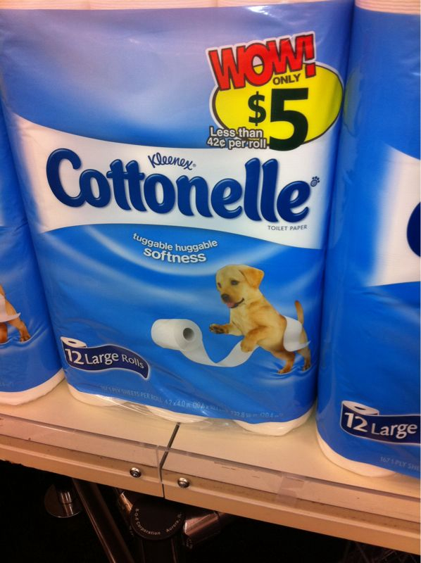 Why is the puppy the national symbol of toilet tissue?