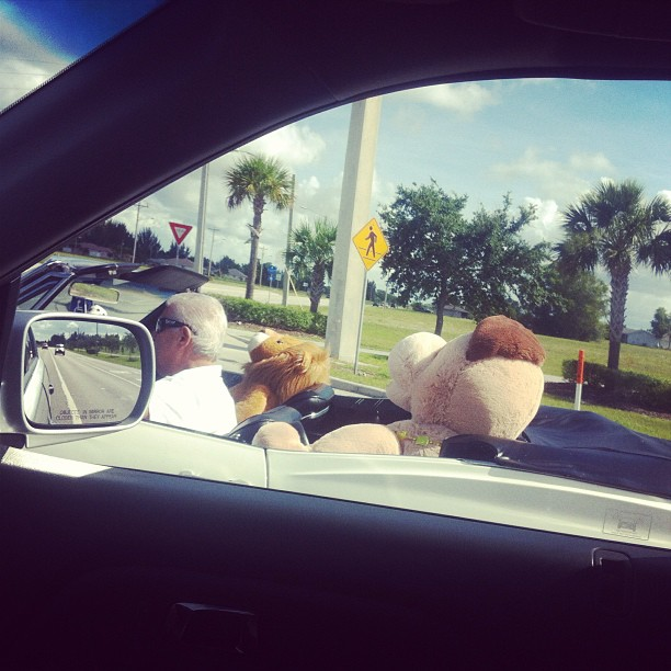 Ah yes just rolling w/ my stuffed bear in the backseat like a bawse.. (at Port Charlotte, FL)