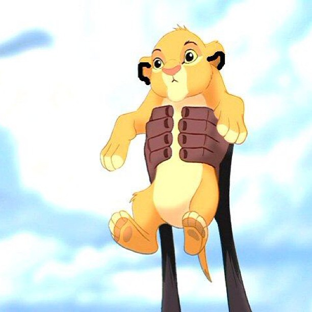 SIMBA held in the air over a cliff.. Everyone cheers. I hold a lion cub over a cliff .. PETA lawsuit.. Double standard anyone?