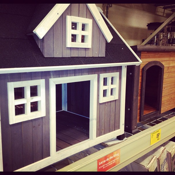 "I found the answer to the age old ? ""who let the dogs out?"" It was This dog house… (at PetSmart)"