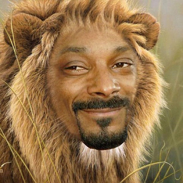 Well apparently snoop dog is now snoop lion.. Further proof that drugs are bad kiddies.