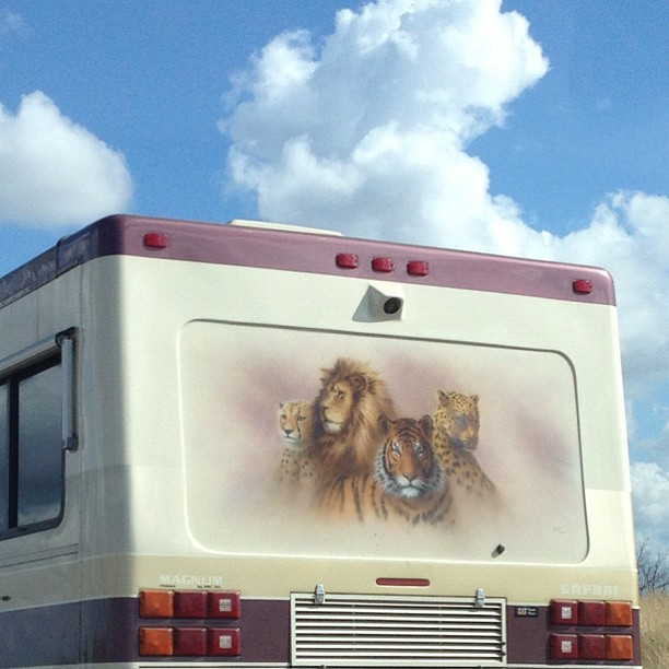 """This will be my tour bus someday.. I will name it """"thundercats"""" everytime I drive it I will say """"hooooooo…!"""""""