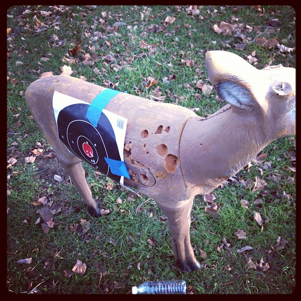 This deer is never gonna make it if he keep taping a bullseye on himself..