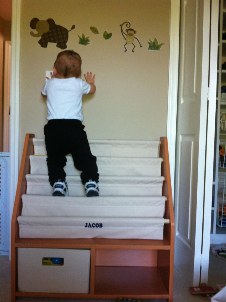 My son turns 1 today. To celebrate he decided to scale his bookshelf like mt everest.. (it was on his bucket list of things to do by 1)