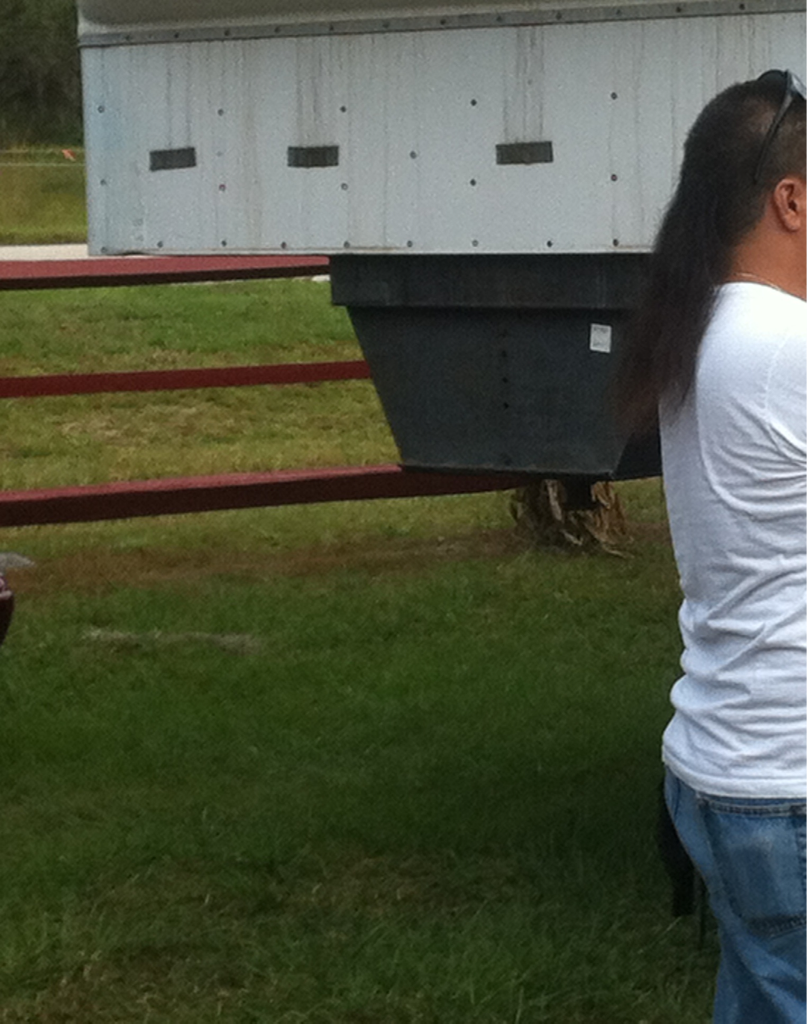 Severe mullet sighting @ a pumpkin festival.. What are the chances of that?