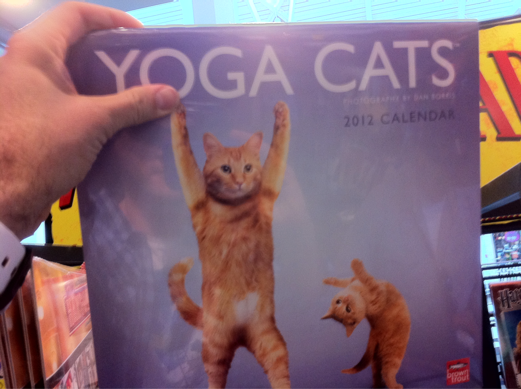If anyone is considering getting me this calendar… Don't worry about it (see pic)