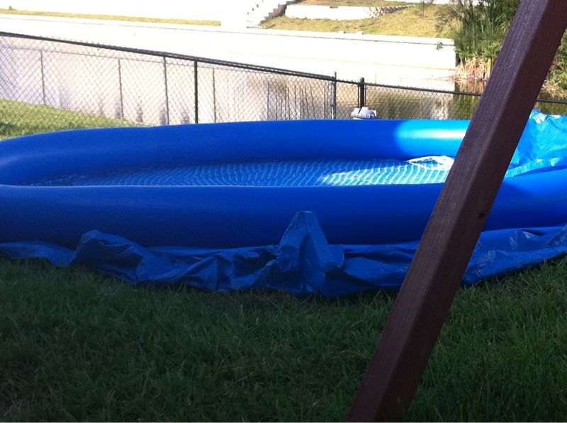 Just installed an automatic bug catcher all by myself aka a deflated kiddie pool in florida.