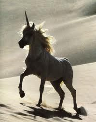 Anyone else wish they owned a unicorn that dispensed ice cream/twizzlers out it's horn? Just me? Ok…