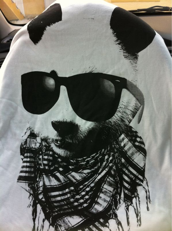 @pedrolatorre bought me a shirt, and yes it's a panda bear w/ shades and a scarf and yes it is awesomesauce..