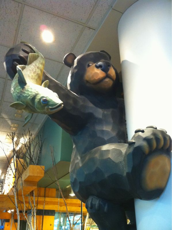 If I was a bear in real life I'd climb a tree and smack someone w/ a fish like this guy