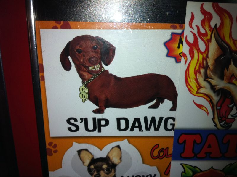 This pic is for all my dawgs! Thugged out since cub scouts…