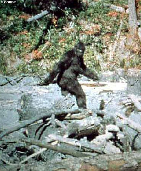 """""""Bigfoot is blurry, and that's extra scary to me. There's a large, out-of-focus monster roaming the countryside. Run, he's fuzzy, get out of here."""""""
