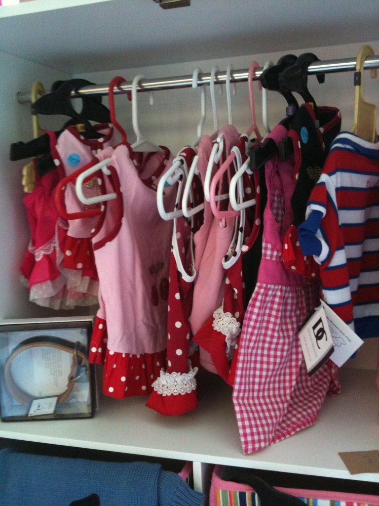 No this pic is not a kids closet..yes it is a dogs closet.. Yes this is sad.. No it's NOT MINE!