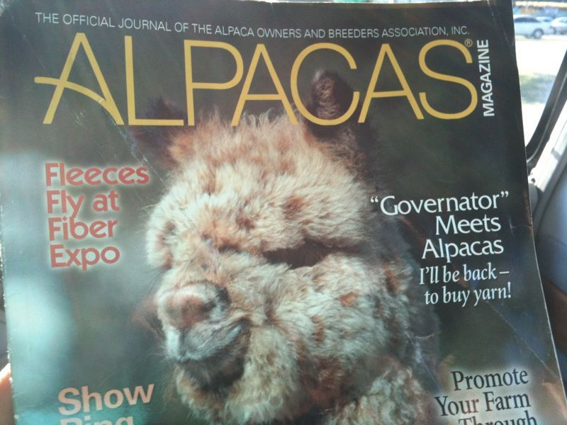 Explain to me how there is an entire magazine dedicated to alpacas?