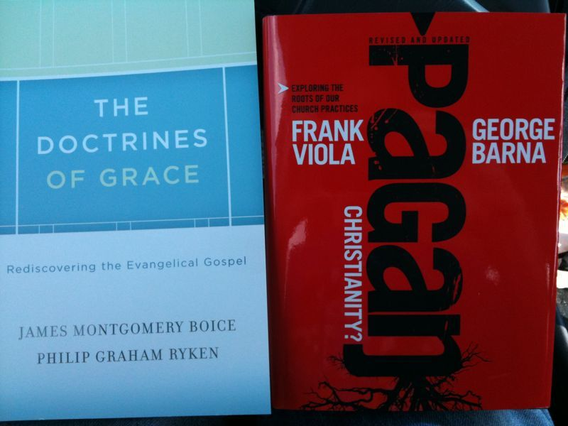 "Just got 2 new books ""pagan Christianity"" and ""doctrines of grace"" anyone ever checked em out? Opinions?"