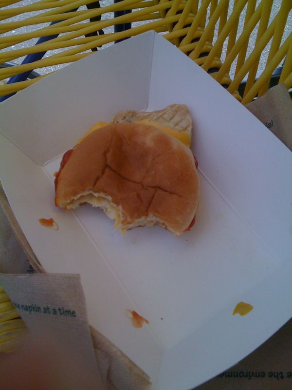 Never eat food from a park: this chicken was basically a dog chew toy wedged between a bun of pain n' anger