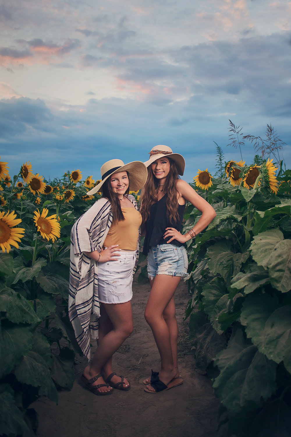 Sunflowers-31.jpg