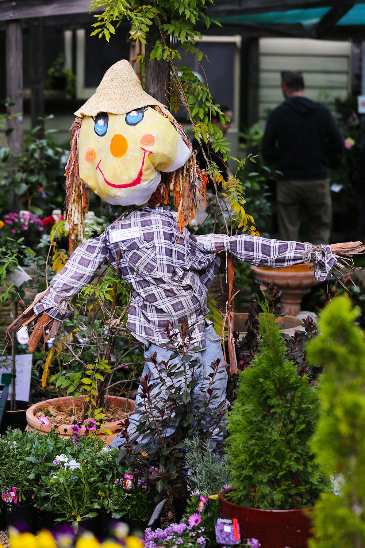 ScarecrowComp_1_lowres.jpg